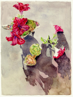 flowers illustration in watercolor by Denise Hilton-Campbell.