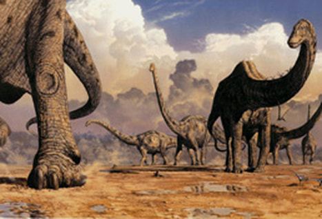 dinosaurs, nature illustration by Mark Hallett.